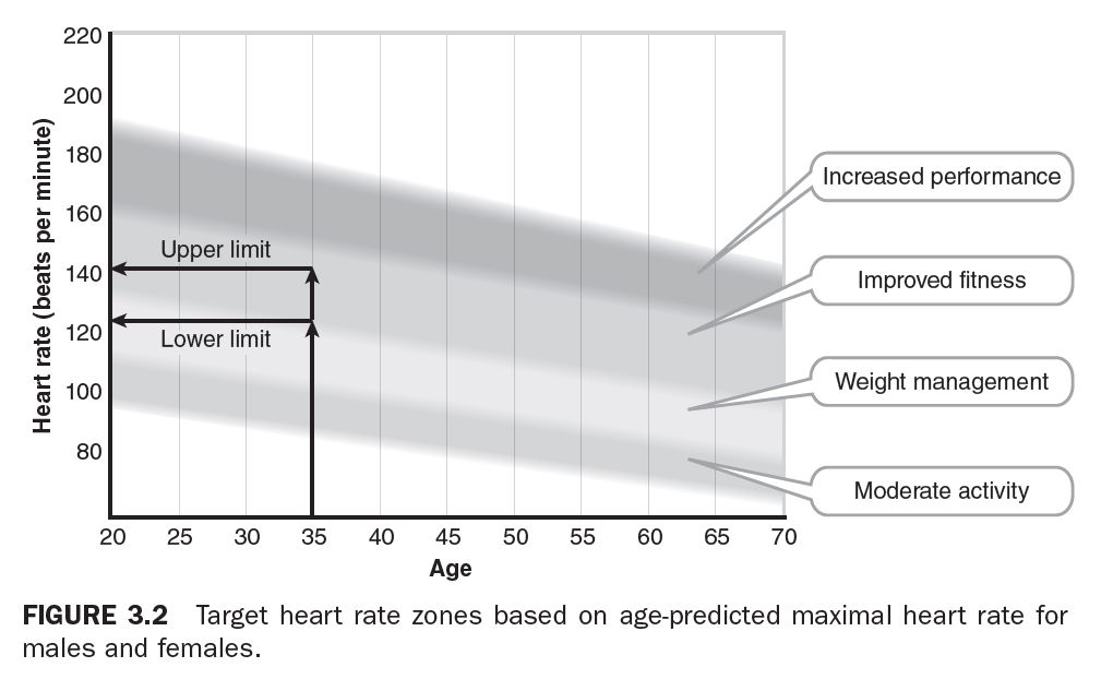 Figure 3.2 - Target heart rate zones based on age-predicated maximal heart rate for males and females.