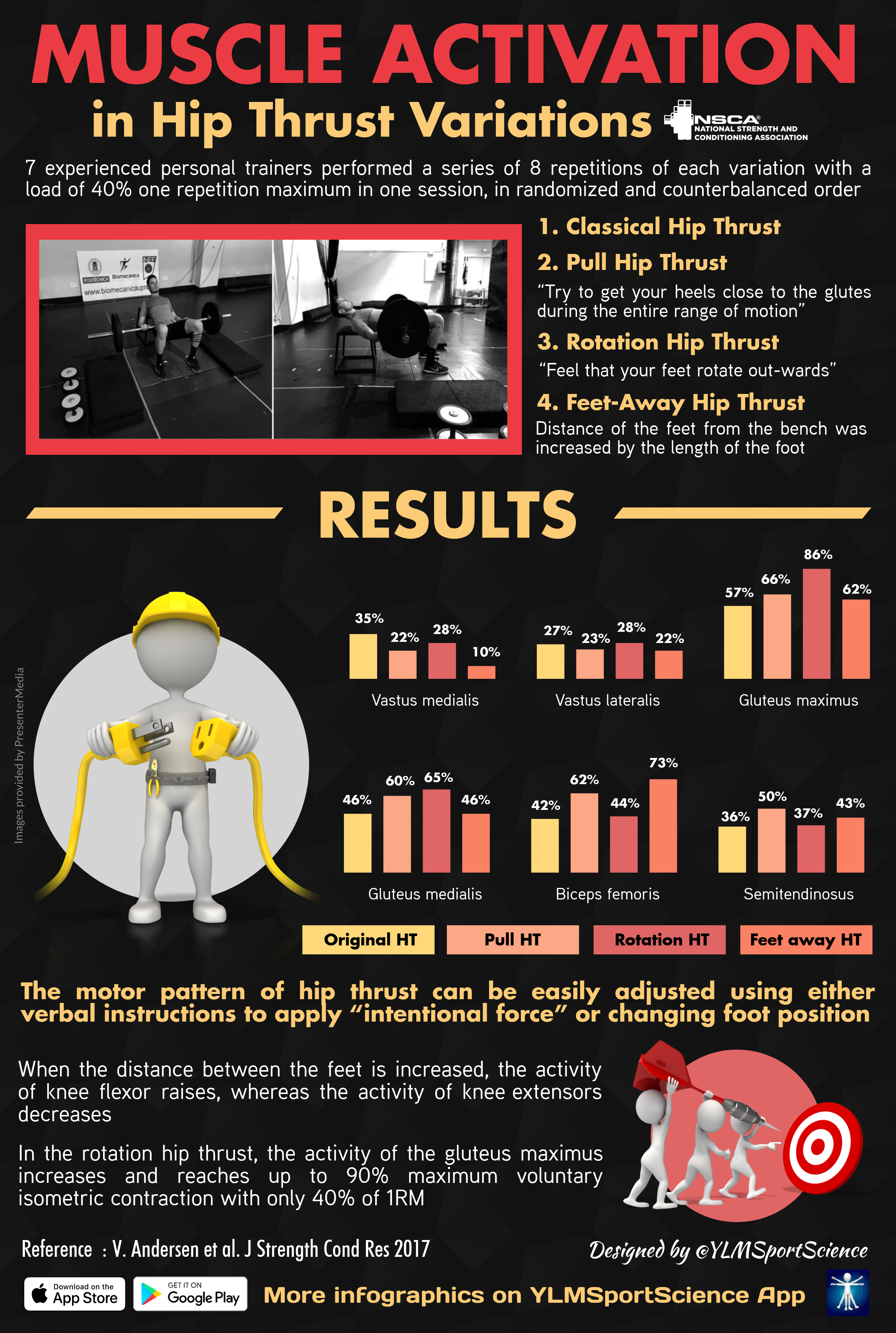 This infographic looks at the percentages of optimal muscle activation in variations of the hip thrust.